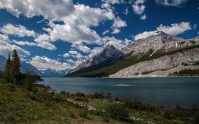 Картинка небо, трава, облака, деревья, природа, озеро, фото
