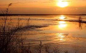Обои солнце, пейзаж, закат, природа, Вечер