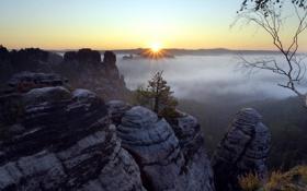 Картинка солнце, лучи, деревья, пейзаж, горы, природа, туман