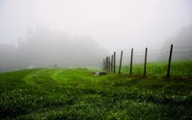 Картинка поле, забор, туман