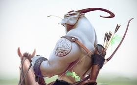 Обои взгляд, лицо, лошадь, лук, рога, стрелы, favn