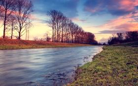 Картинка реки, река, трава, фото, вид, вода, деревья