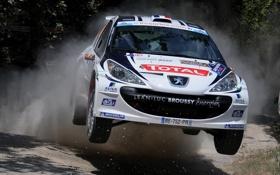 Обои Скорость, Пежо, Peugeot, WRC, Rally, Ралли, Передок