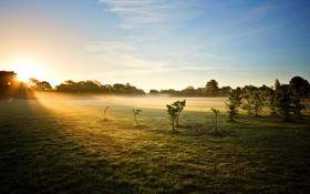 Картинка Sunrise, mist, Astley Park