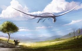 Обои арт, облака, всадник, конь, дракон