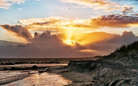 Картинка море, пляж, небо, солнце, облака, берег, чайки