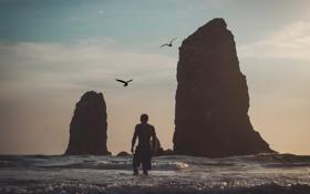Картинка волны, пляж, полет, закат, скалы, чайки, мужчина
