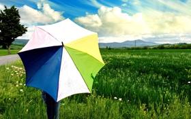 Картинка зелень, белый, небо, трава, листья, девушка, солнце