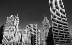 Обои небоскребы, черно белое, чикаго, Chicago