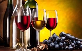 Картинка ягоды, вино, красное, белое, бокалы, виноград, гроздь