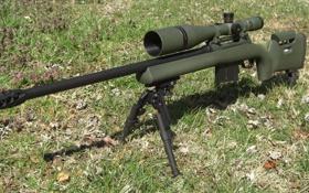Обои оружие, винтовка, снайперская, Savage 110