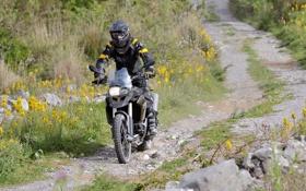 Обои дорога, трава, цветы, BMW, БМВ, мотоцикл, байкер