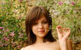 Картинка зелень, цветок, девушка, природа, улыбка, шатенка, эмили