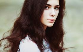 Картинка портрет, Milena, кареглазая, natural light