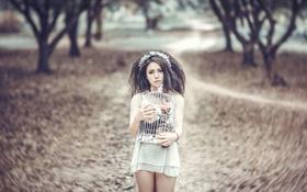 Картинка девушка, цветы, клетка