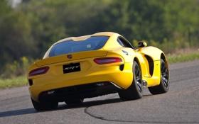Обои фон, Додж, Dodge, суперкар, Viper, вид сзади, гоночный трек