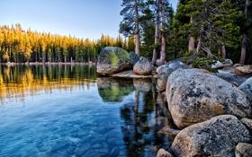 Картинка лес, Калифорния, Tenaya Lake, Йосемити, Yosemite National Park, валуны, California