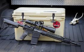 Обои оружие, винтовка, автоматическая, AR-10