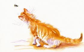 Обои кошка, кот, акварель, пчёлка