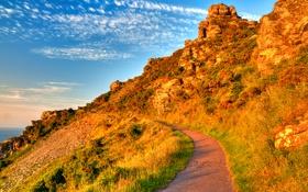 Обои дорога, небо, трава, облака, закат, горы, тропа
