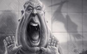 Картинка вода, страх, тень, душ, Хичкок, alfred hitchcock