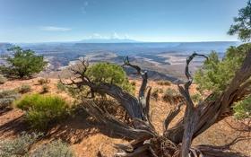 Обои rock, sky, usa, utah, canyonlands