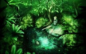 Обои зелень, лес, пруд, фея