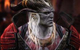 Обои фентези, игра, Dragon Age 2, Аришок