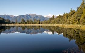 Обои вода, деревья, природа, фото, пейзажи, красота, красивые картинки