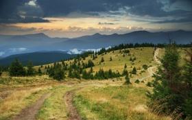 Картинка облака, трава, небо, дорога, горы, хвойные деревья
