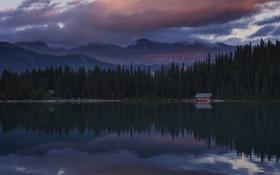 Обои лес, закат, озеро, Alberta, Lake Louise