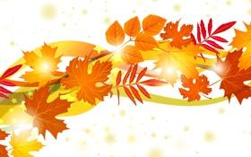 Обои листья, осень, коллаж
