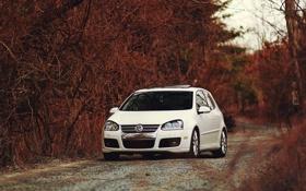 Картинка авто, лес, белый, Volkswagen, рыжий, бездорожье, VW Golf GTI