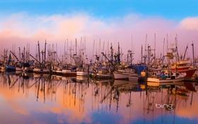 Картинка море, небо, вода, облака, пристань, бухта, яхты