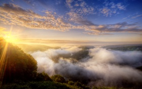 Картинка лес, природа, туман, рассвет, Германия
