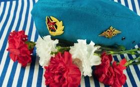 Обои цветы, тельняшка, гвоздики, голубой берет, память о службе
