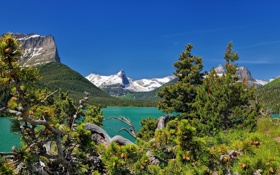 Обои горы, сосны, Монтана, Glacier National Park, Saint Mary Lake, Montana, Озеро Святой Марии