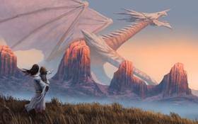 Обои поле, девушка, скалы, дракон, ребенок, арт, дитя