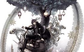 Картинка дерево, фонари, лестница, Парень, сидит, скелеты