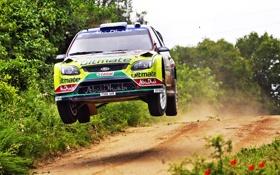Картинка Ford, Авто, Спорт, Скорость, Гонка, Focus, WRC