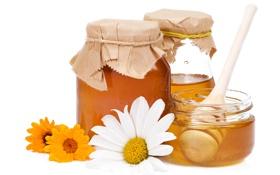 Обои цветы, ромашки, мед, ложка, сладости, банки, white
