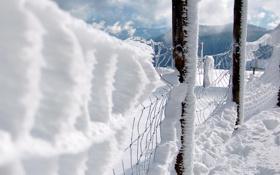 Обои зима, снег, сетка, забор