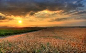 Обои небо, солнце, пейзаж, закат, природа, фото, рассвет