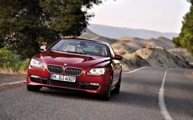 Картинка Красный, Авто, Дорога, BMW, Машина, Асфальт, БМВ