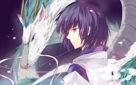 Картинка дракон, аниме, арт, парень, Хаяо Миядзаки, spirited away, унесенные призраками