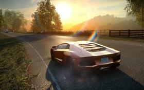 Обои дорога, солнце, горы, гонка, ракурс, need for speed the run, lamborghini aventador lp-700-4