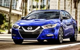 Картинка Nissan, синяя, ниссан, максима, 2015, Maxima