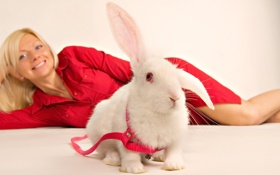 Обои девушка, кролик, ошейник, в красном