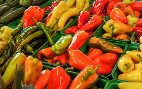 Обои color, pepper, spicy, hot hot hot