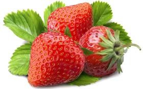 Обои ягоды, весна, земляника, клубника, листочек